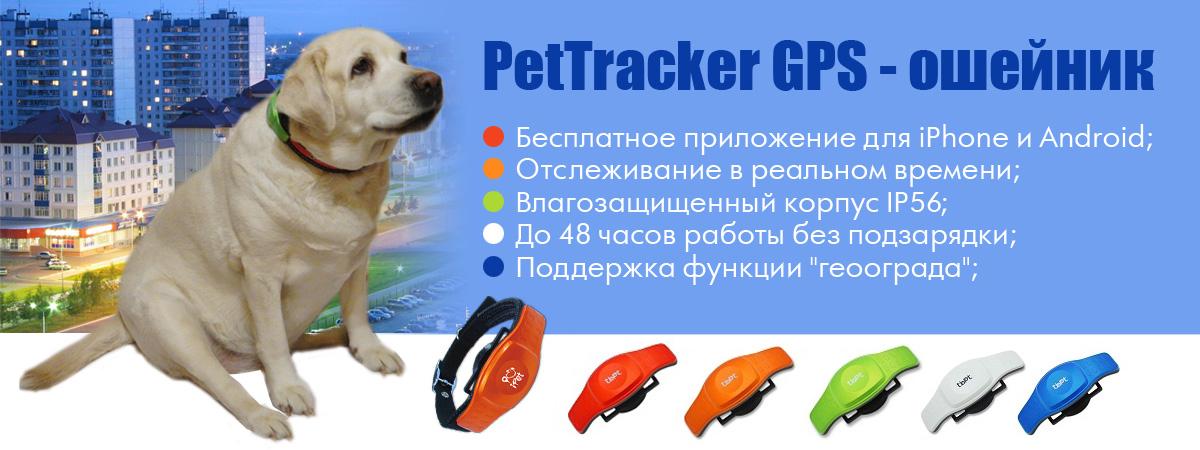 PetTracker GPS - ошейник для собак купить в Волгограде